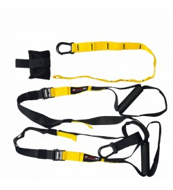 Team RH Suspension Trainer